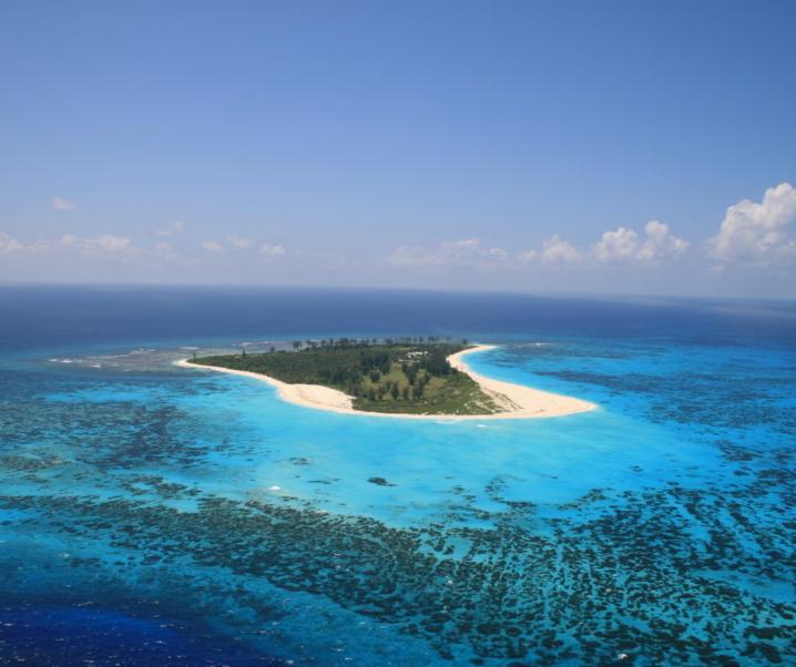 Bird Island Seychelles, birdwatching e relax