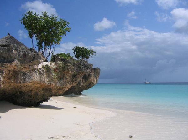 Zanzibar la porta d africa emozioni in viaggio - Zanzibar medicine da portare ...