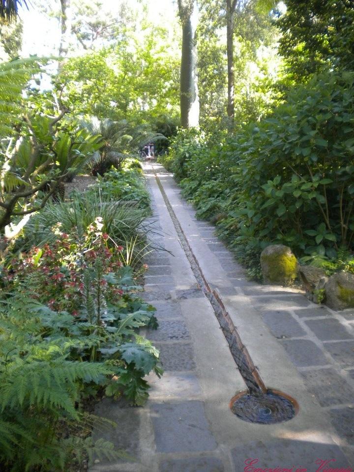 Giardini la mortella ischia fontana bassa emozioni in viaggio - Giardino la mortella ...