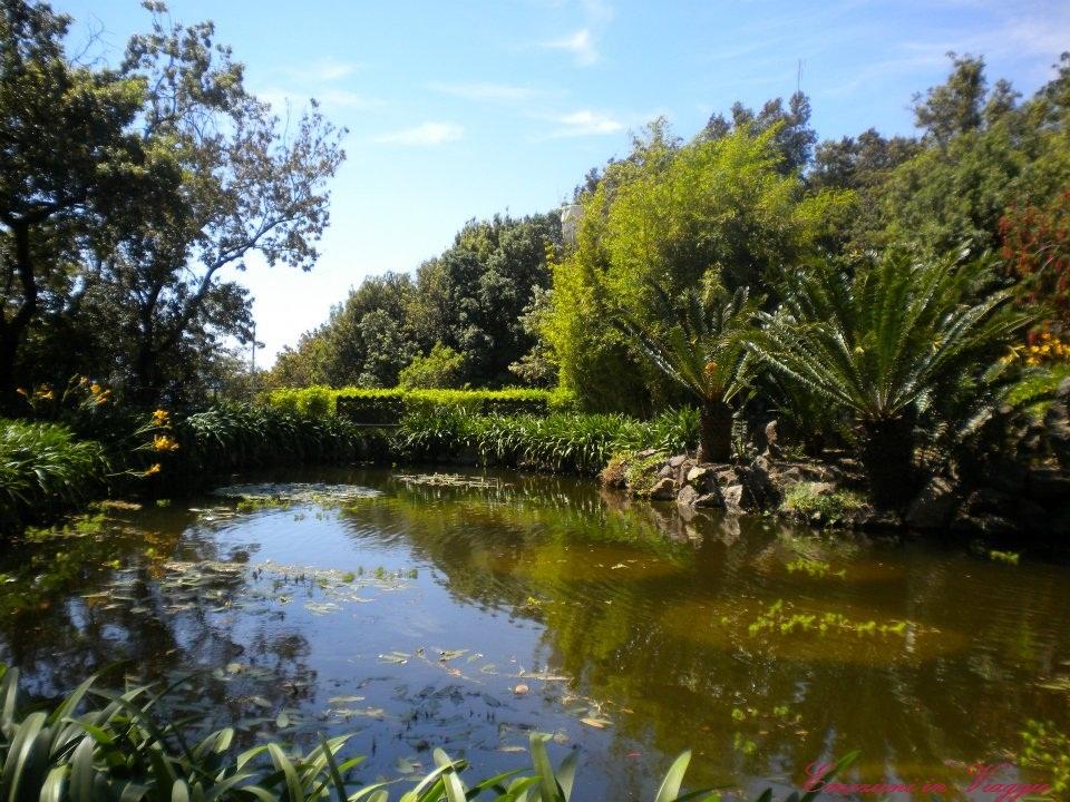 Visita ai giardini la mortella di ischia emozioni in viaggio - Giardino la mortella ...