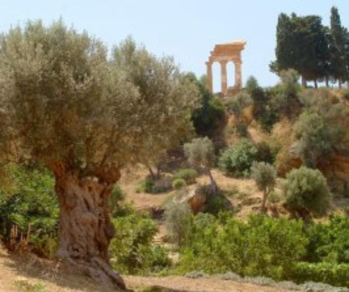 Giardini della Kolymbetra, il parco tra i templi greci