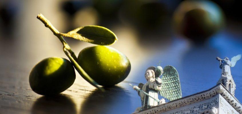 A Lucca si celebra l'olio d'oliva made in Italy