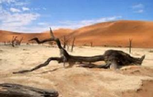 Nella Valle della Morte