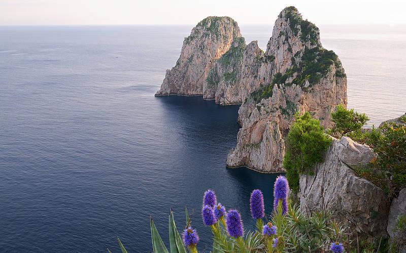 Visitare Capri in primavera: una tranquilla isola in fiore