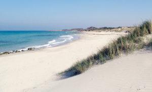 Windsurf_in_Puglia_Torre_Guaceto