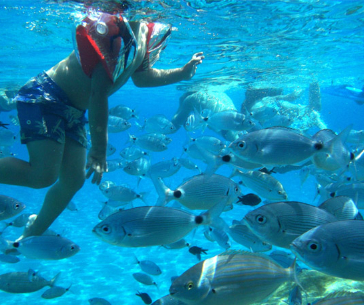 Immersioni Sardegna. Area Marina Protetta Capo Carbonara