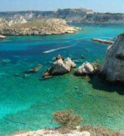 Immersioni Puglia, dalle Tremiti a Taranto, tre luoghi bellissimi per esplorare le meraviglie subacquee della regione